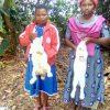 Dodatkowa pomoc na wyposażenie domu podopiecznej programu Adopcja Serca 04 Ruch Maitri Rwanda