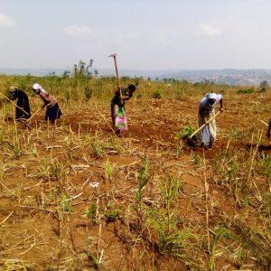 Budowa domu dla bezdomnych rodzin w misji Esseng Kamerun Ruch Maitri Adopcja Serca 01