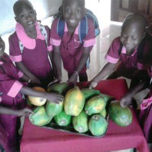 instalacja paneli słonecznych Ruch Maitri pomoc Afryce Adopcja Serca Kamerun Atok 02